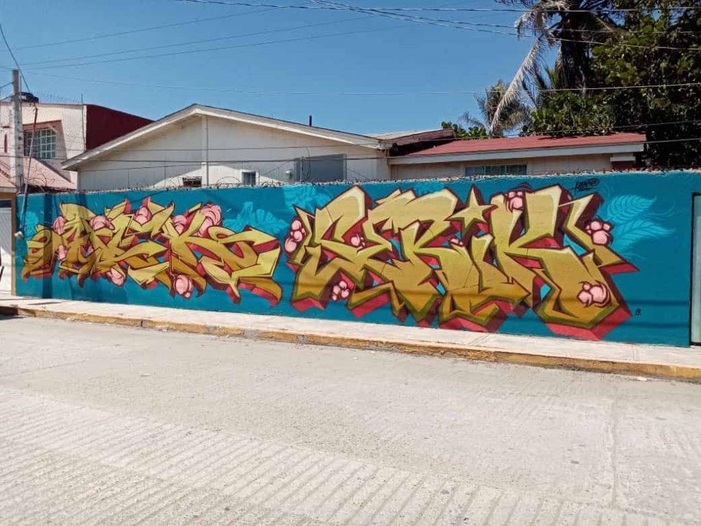 Graffiti Wall Z, Playa Bonfil, 2020 Graffiti art, Acapulco, GRO., MX