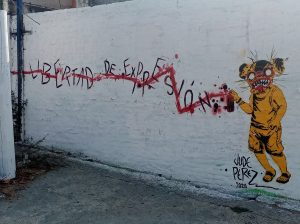 Libertad_de_Expresion-Acapulco Graffiti