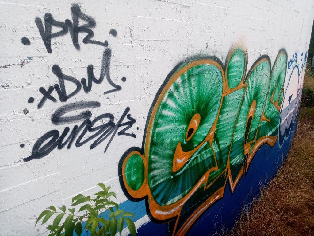 GraffitiV- Escenica in Acapulco 2021