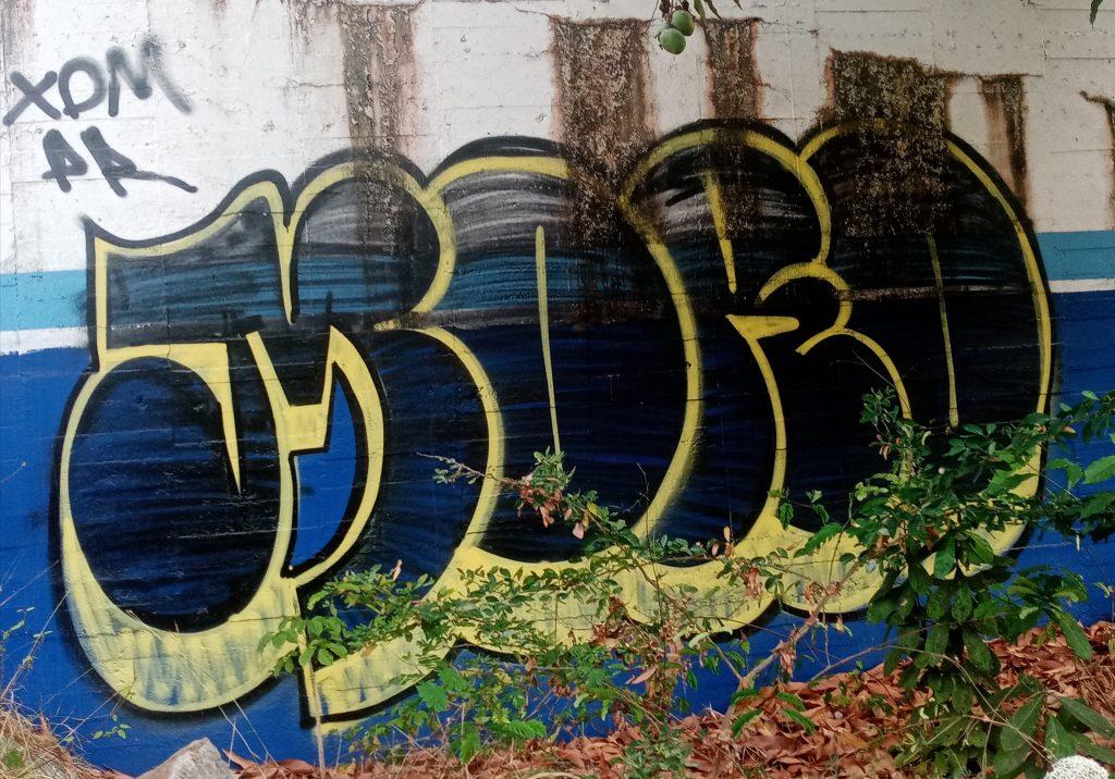 GraffitiY- Escenica in Acapulco 2021
